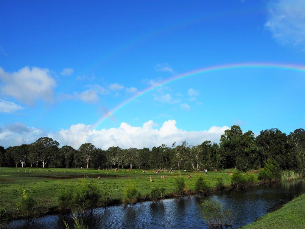 Duha v chráněné oblasti Coombabah Lakelands, Gold Coast, 2020.